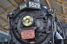 X38A7924 copy