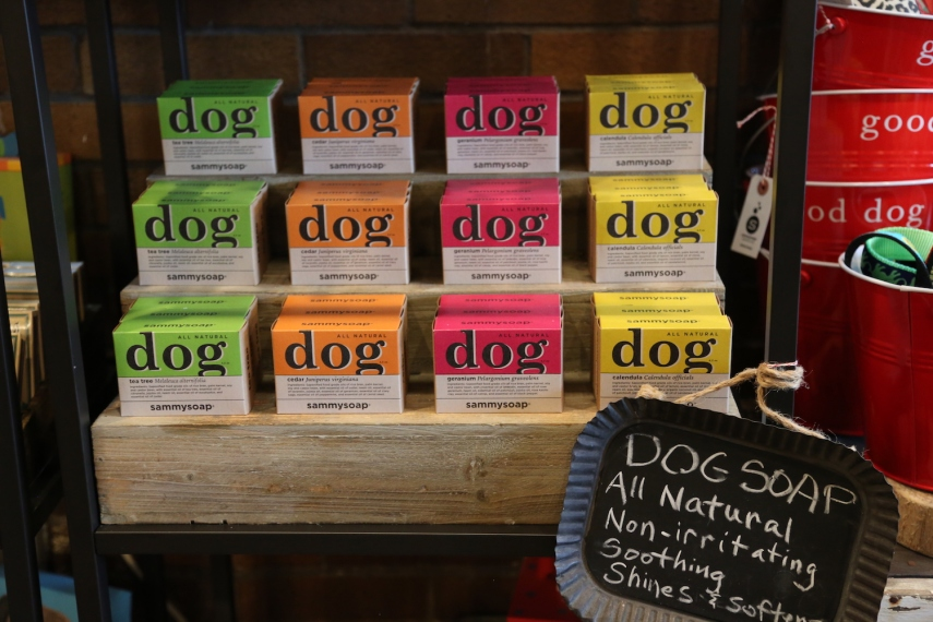 Dog Soap.JPG